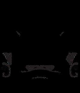 Bourbon Real Talk_Logo.png