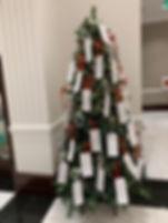 Town Hall Tree.jpg