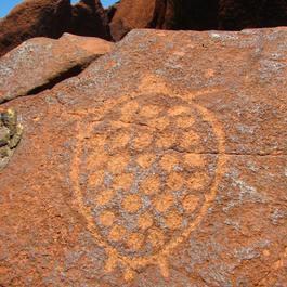 Turtle Rock Art
