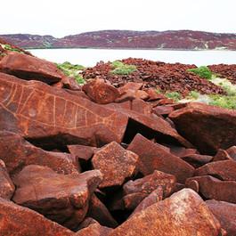Fish rock art