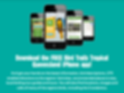 Smart Phone Applicatons development