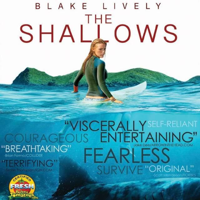 shallows-640
