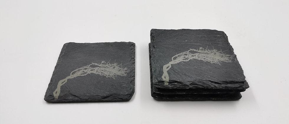 'Wild Atlantic Tree' Slate Coasters