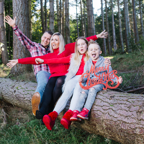 Culloden Woods - Christmas Mini Session