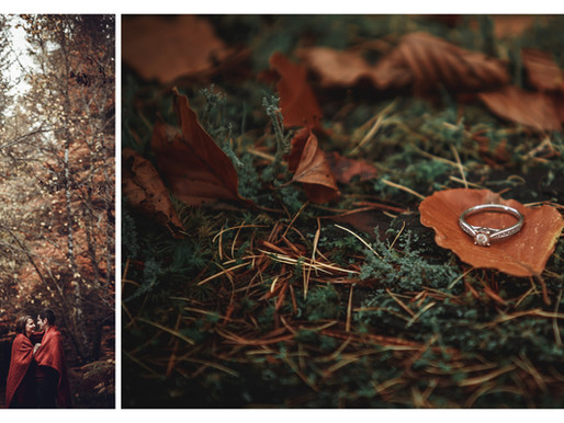 Magical Engagement Session in Evanton Woods