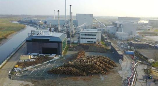 Sandwich Biomass 2.jpg