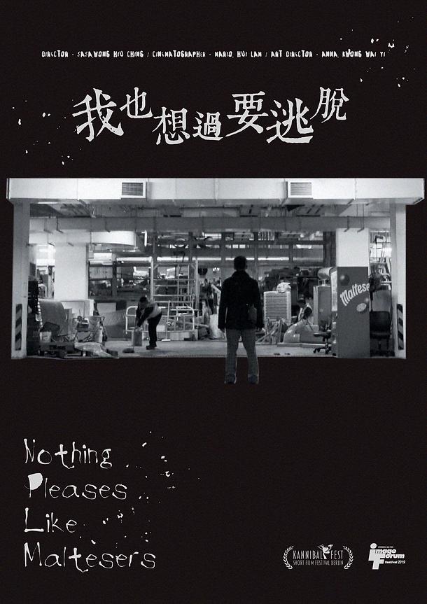 Nothing Pleases Like Maltesers_Poster_RG