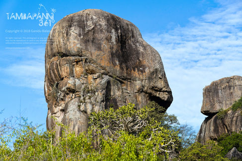 Human Face Rock - Yala