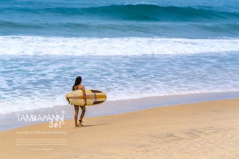 Surfing in Arugam Bay