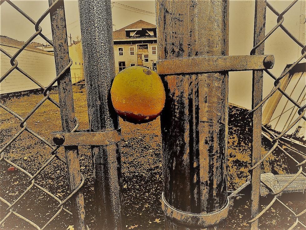 orangeu.jpg