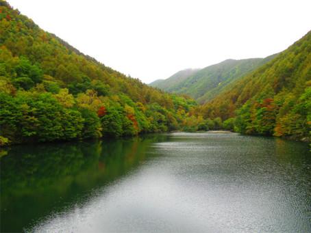 巣栗渓谷の紅葉が色づき始めました