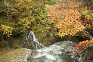 観音滝-s.jpg