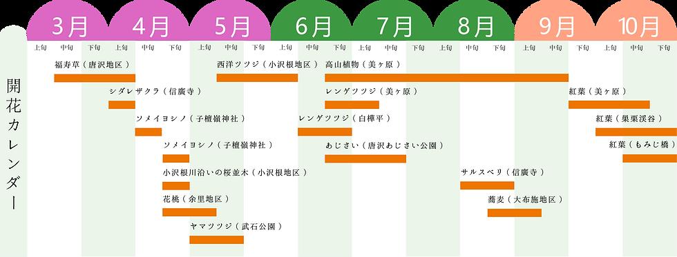 開花カレンダー.png