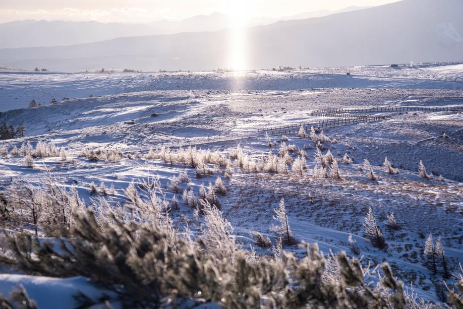 冬の美ヶ原高原と一面の樹氷とサンピラー.jpg