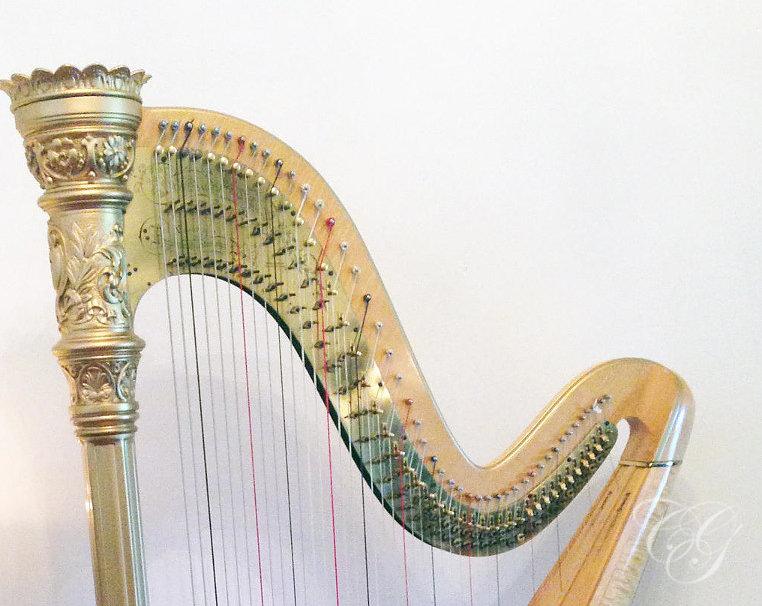 30min Harp Lesson