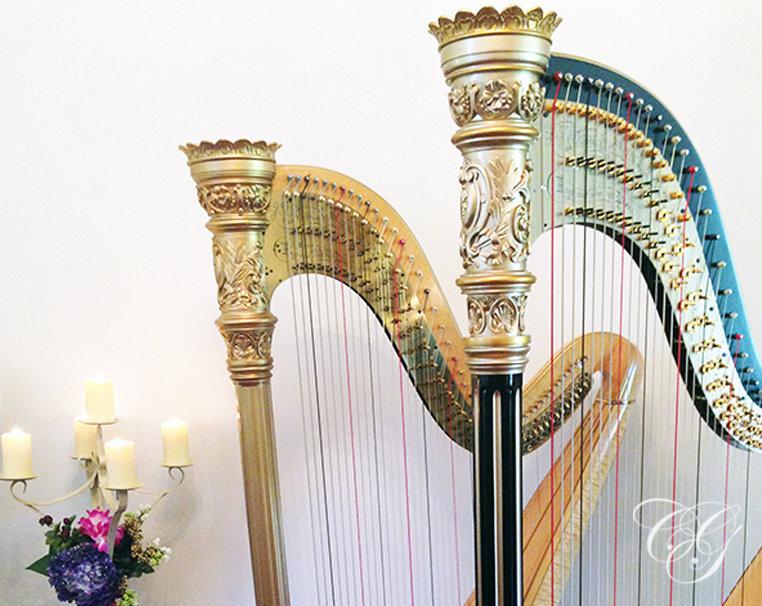 1hr Harp Lesson