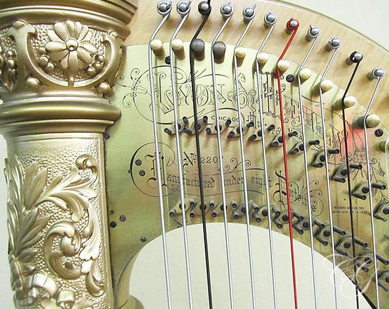 45min Harp Lesson
