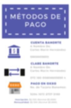 Requisitos_y_Métodos_de_Pago_con_Costos(