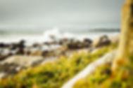 Tim_Foster-Ocean.jpg