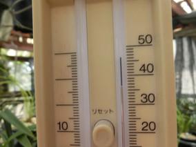 暑いですね!!