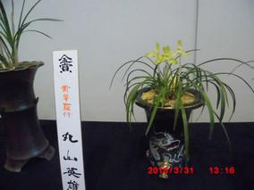 蘭展示会の続き