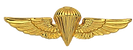 wings png.png