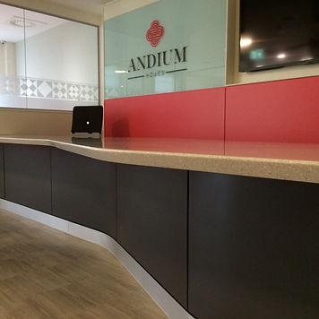 andium 3.JPG