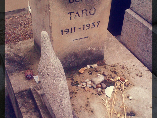 T come Taro, Gerda Taro
