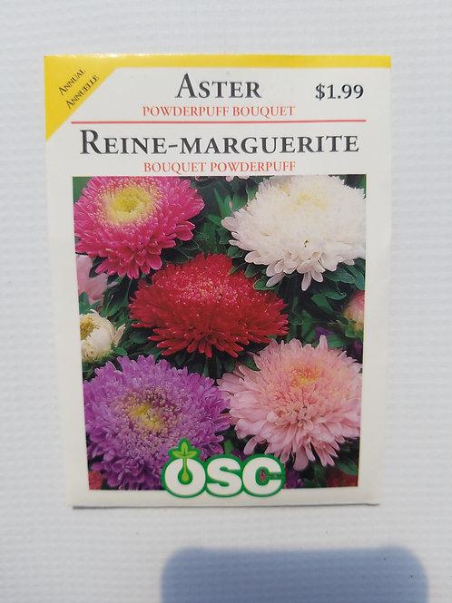 Aster, Powderpuff Bouquet