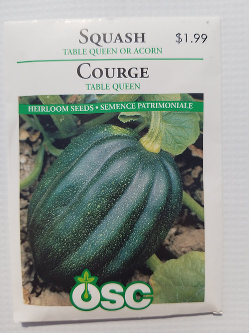 Squash, Table Queen or Acorn