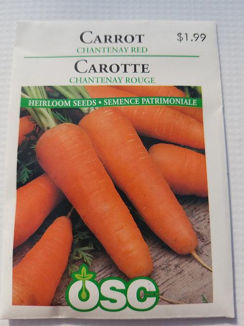 Carrot, Chantenay Red