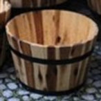 Planter, Small Acacia Barrel