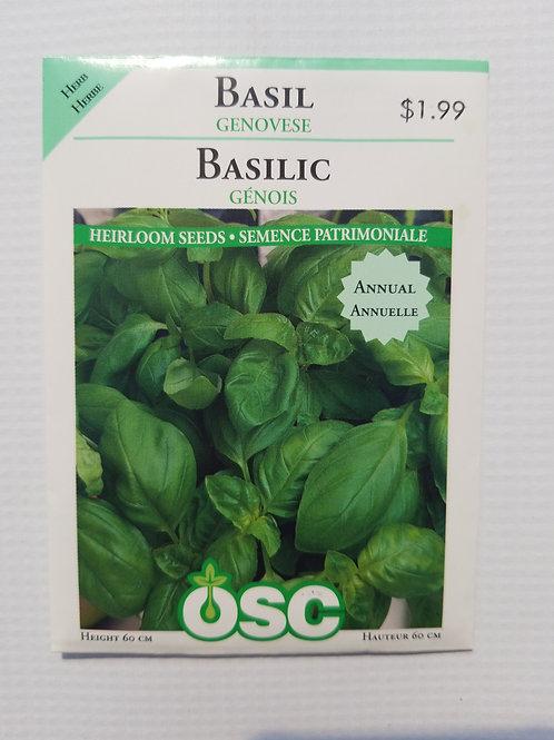 Basil, Genovese