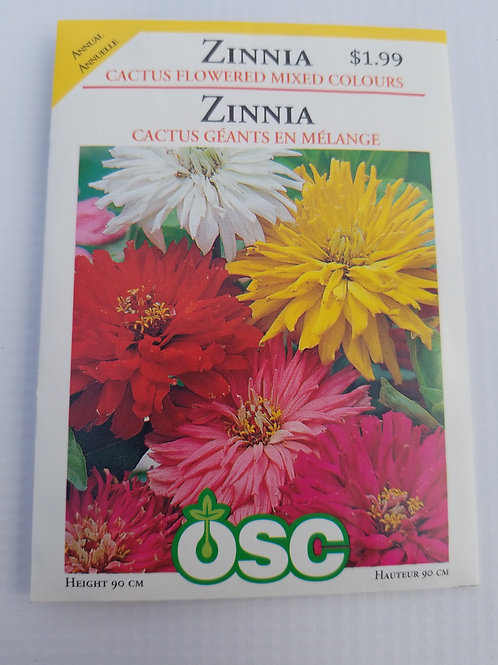 Zinnia, Cactus Flowered Mixed Colours