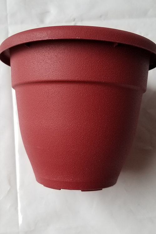 "Planter, 6"" Caribbean Red"