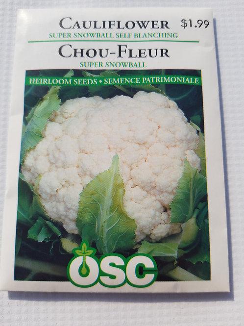 Cauliflower, Super Snowball Self Blanching