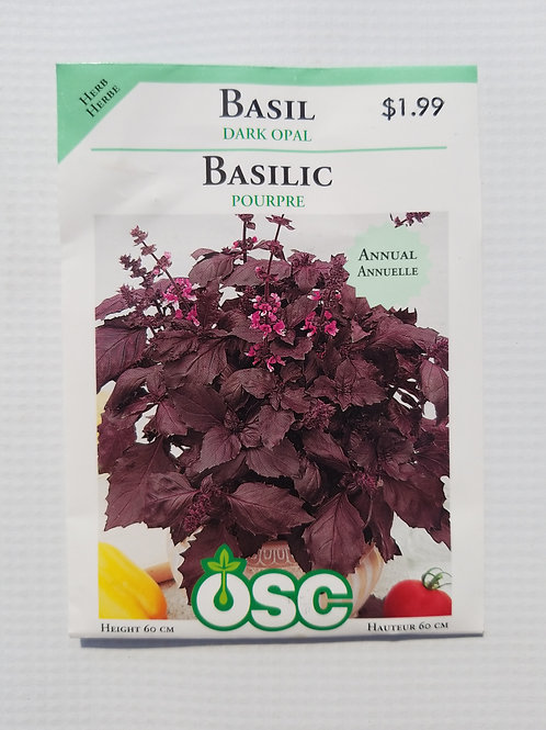 Basil, Dark Opal