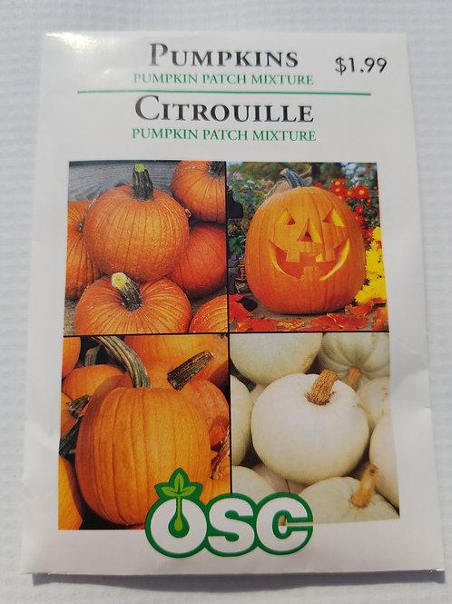 Pumpkin, Pumpkin Patch Mixture