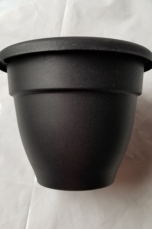 "Planter, 8"" Caribbean Black"