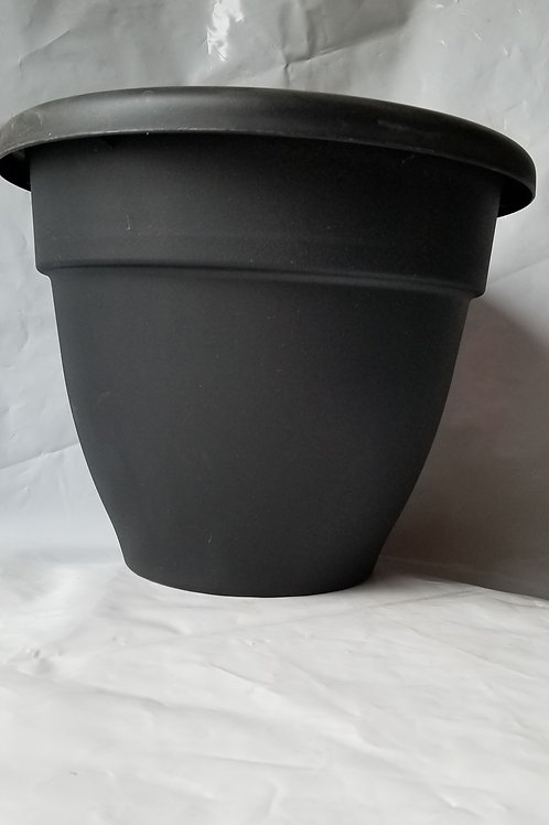 "Planter, 12"" Caribbean Black"