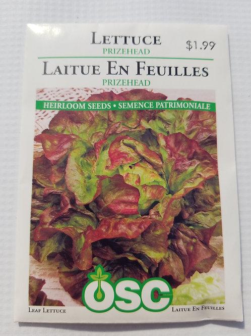 Lettuce, Prizehead
