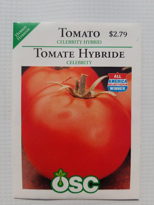 Tomato, Celebrity Hybrid
