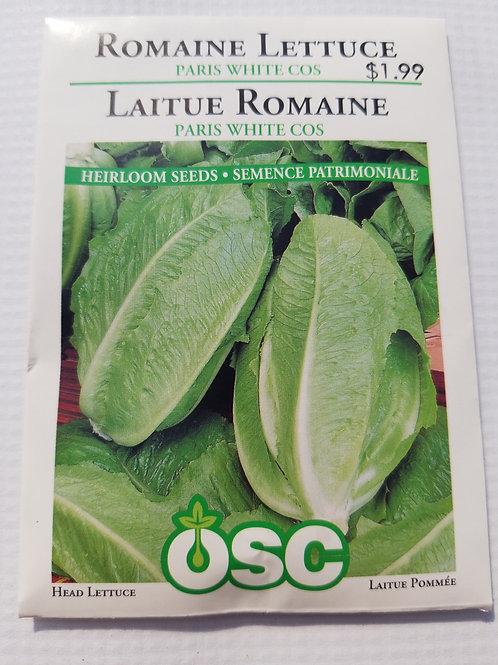Lettuce, Paris White Cos