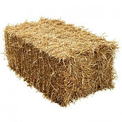 straw bale.jpg