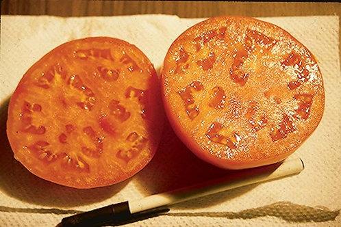 Tomato, Glamour
