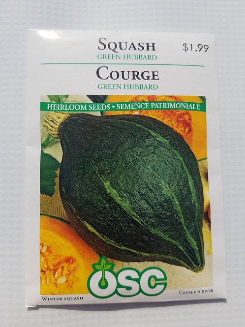Squash, Green Hubbard
