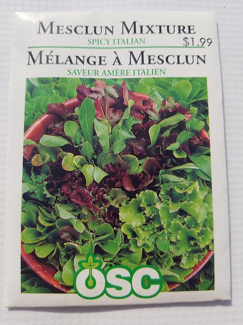 Lettuce, Mesclun Mixture Spicy Italian