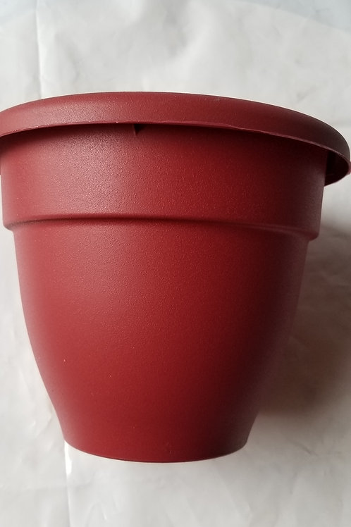 "Planter, 10"" Caribbean Red"