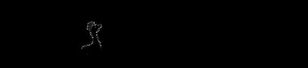 Wondra Text Logo.png