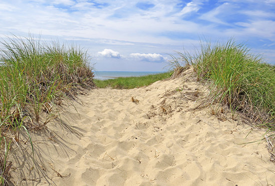A path of sand bordered by beach grass, with water and blue sky